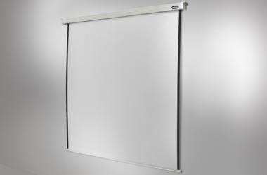 celexon screen Electric Professional 300 x 300 cm 300 x 300 cm