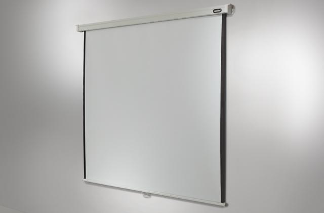Ecran de projection celexon manuel PRO 240 x 240 cm 240 x 240 cm