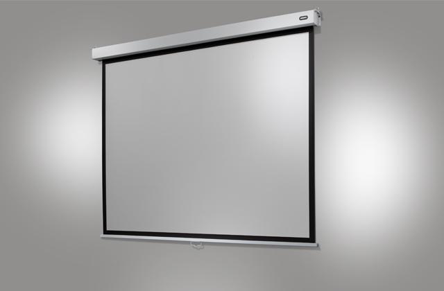 celexon celexon leinwand rollo professional plus 160 x 120 cm 160 x 120 cm. Black Bedroom Furniture Sets. Home Design Ideas